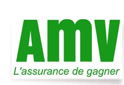 logo_amv